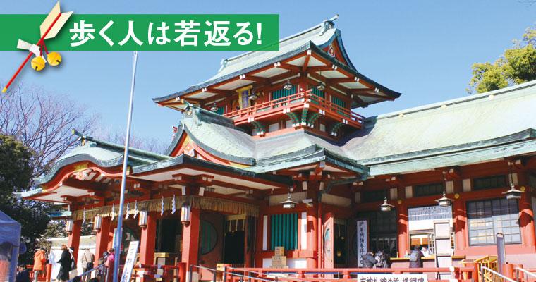富岡八幡宮から歩く「深川七福神巡り」