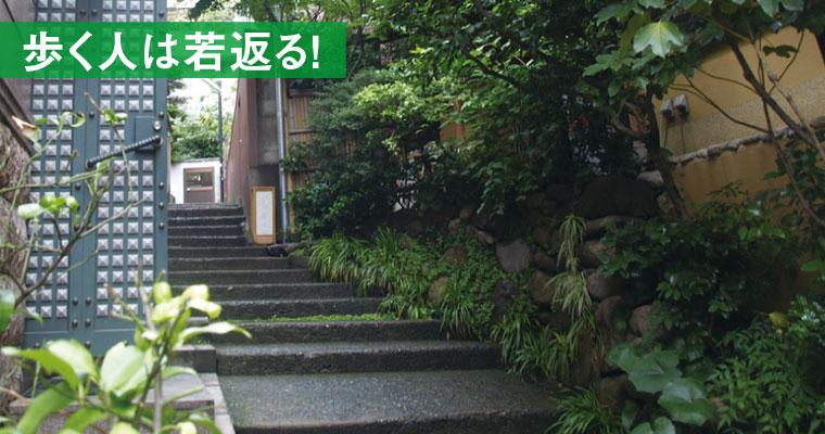 神楽坂~古き良き江戸情緒が残る、粋でおしゃれな街~