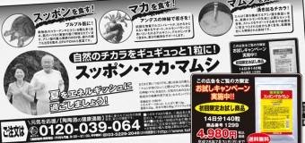 スッポン・マカ・マムシお試し商品を期間限定で販売中!!【7月31日(日)迄】