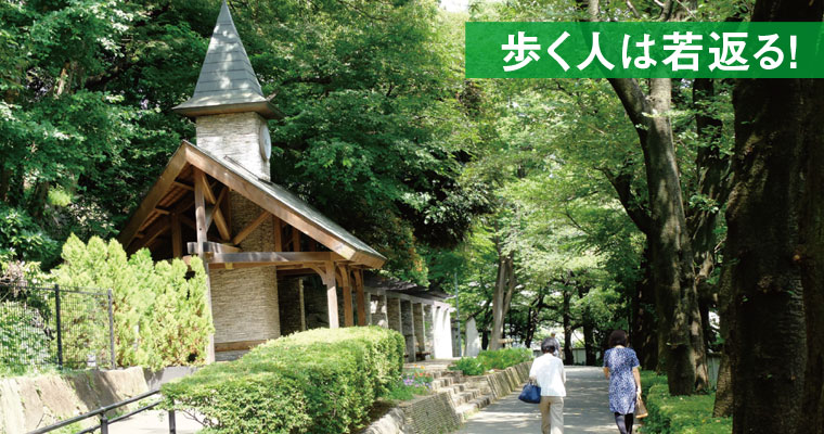 江戸川橋から歩く「神田川周辺散策」~緑に囲まれた昔懐かしい風情が残る