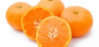 デルナカ!27日目「陶陶酒でカシスオレンジ」